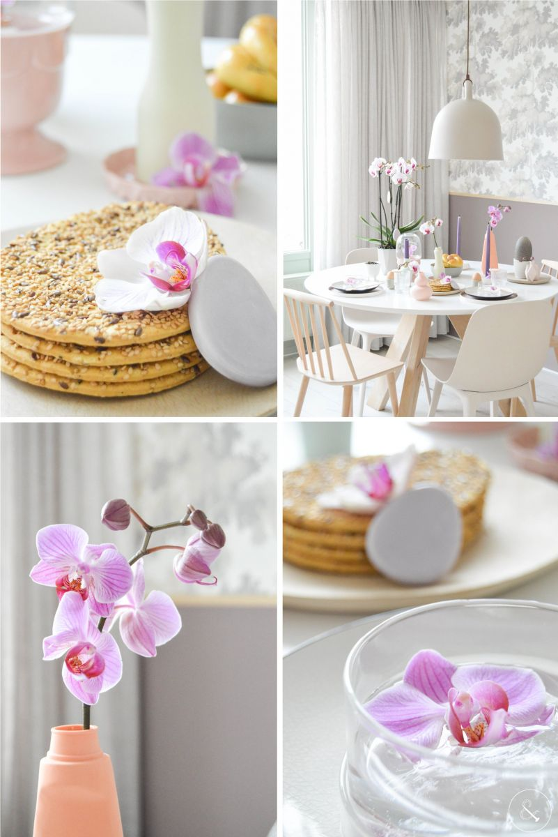 orchids as a decoration on the breakfast table