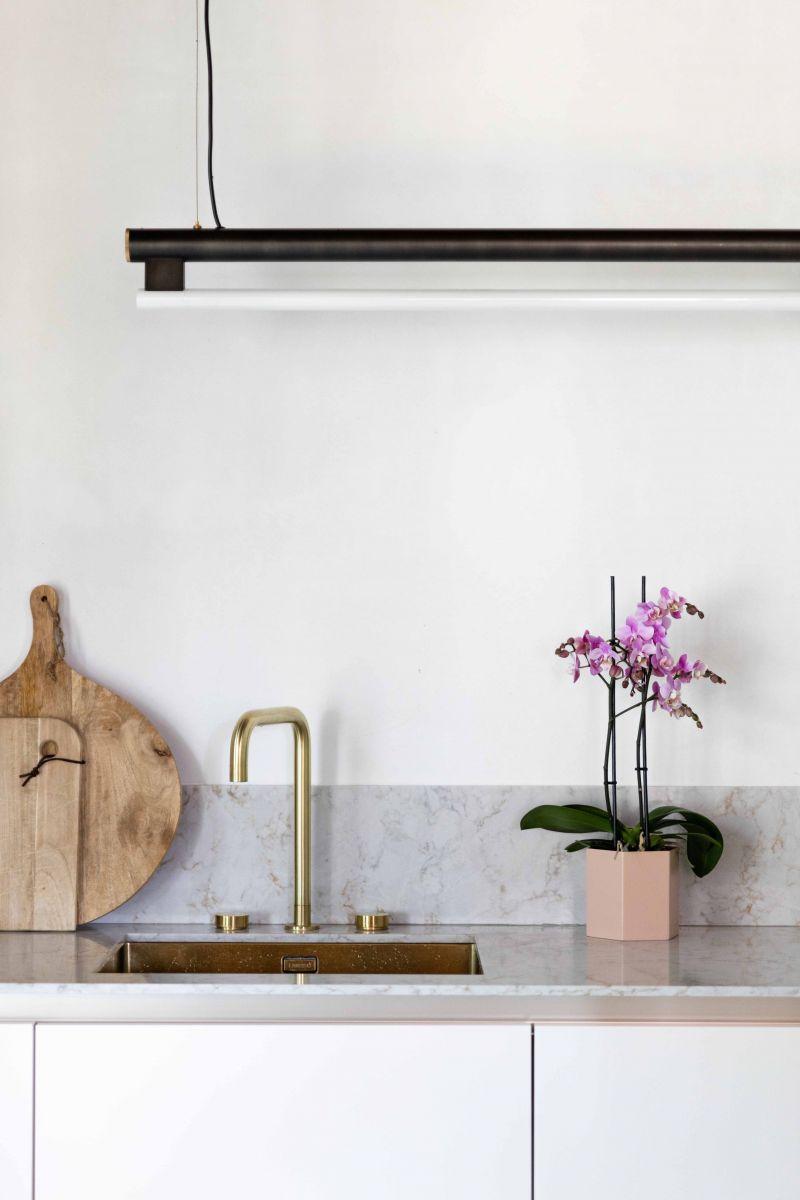 Orchidee auf dem Tresen in der Küche